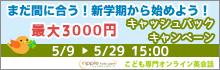 20170509キャンペーンs
